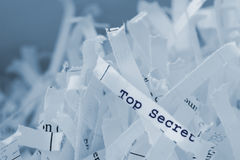 Shredded Paper. With text royalty free stock image