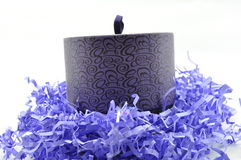 Shredded paper and trinket box Royalty Free Stock Images