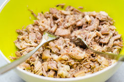 Shredded pork meat Royalty Free Stock Photos