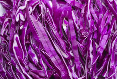 Shredded red cabbage Stock Photos