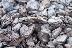 Shredded tree bark for decoration and mulching in landscape design Royalty Free Stock Photography