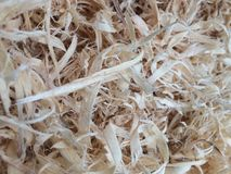 Shredded woodchips. Detail close up of shredded woodchips or sawdust, from a workshop, woodcutting, or used as pets bedding. Light brown detail of shavings Stock Image