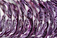 Shreded red cabbage close up.Straight row of chopped cabbage royalty free stock photography