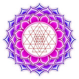 Shree Yantra Lotus Stock Photo