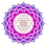 Shree Yantra Lotus. Illustration of a shree yantra Lotus Stock Photo