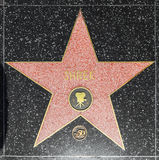 Shrek's Star on the Hollywood Walk of Fame in Los Angeles Stock Photos