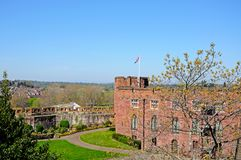 Shrewsbury Castle. Stock Image
