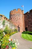 Shrewsbury Castle. Stock Photo