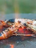 Shrim che cuoce nella stufa, fotografia stock libera da diritti