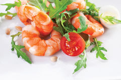 Free Shrimp Stock Photo - 15264510