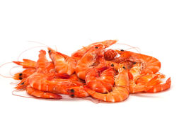 Shrimp. On a white background stock photo