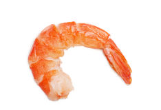 Shrimp. Closeup view of shrimp isolated on the white background Stock Image