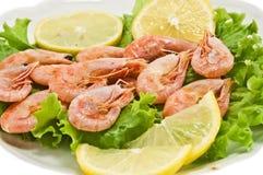 Shrimp. Boiled shrimp in the photo Stock Photography