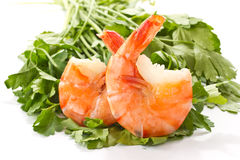 Shrimp. Boiled big red shrimp on a background white Stock Photos