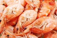 Shrimp. Many raw shrimp close up royalty free stock photos