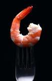 Shrimp. Cooked shrimp on a fork stock images