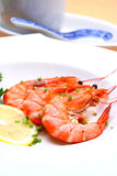 Shrimp. Plate of delicious steamed shrimps royalty free stock photo