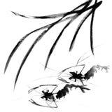 Shrimp. Chinese traditional ink painting, shrimp, on white background Royalty Free Stock Image