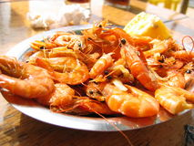 Shrimp. The best meal in Florianópolis. Shrimps on Costa da Lagoa Royalty Free Stock Image