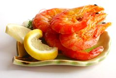 Shrimp royalty free stock images