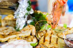 Shrimp. Restaurant. Appetizer photo of delicious shrimp & other seafood Royalty Free Stock Photos