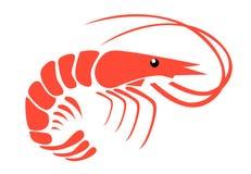 shrimp Imagem de Stock