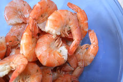 Shrimp. Cooked shrimp in a blue glass bowl stock photography