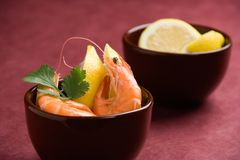 Shrimp appetizer Stock Image