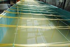 Shrimp aquaculture bath. At small industry Stock Photography