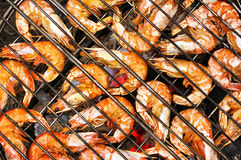 Shrimp background. Background from the shrimps on the grill Royalty Free Stock Photography