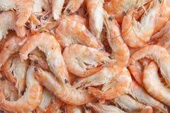 Shrimp background. Lots of frozen shrimp for background use Stock Photography