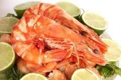 Shrimp background Royalty Free Stock Images