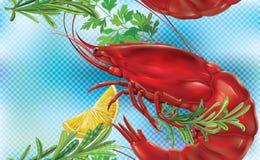 Shrimp on a blue background Stock Photo