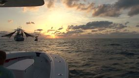 Shrimp boat at dawn stock video