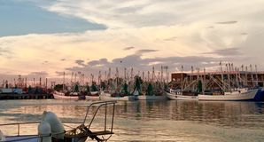 Shrimp Boat Fishing Fleet Stock Photo