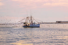 Shrimp Boat at Grand Isle, Louisiana. A shrimp boat at Grand Isle, Louisiana on the Gulf Coast stock photography