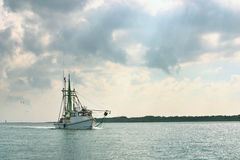 Shrimp boat returns from day of fishing. A shrimp boat on the gulf coast in Texas returns to port after a day of fishing royalty free stock photo