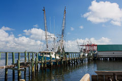 Shrimp boats Stock Photography