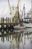 Shrimp boats Stock Image