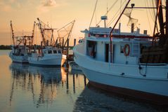 Shrimp Boats at Dawn Stock Photos