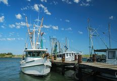 Shrimp Boats at the Dock Royalty Free Stock Photography