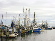 Shrimp Boats At Dock Stock Image