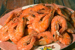 Shrimp boil. Seafood in pattaya Stock Photography