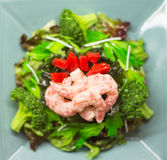 Shrimp and Broccoli Royalty Free Stock Photo