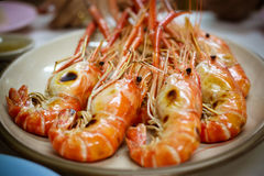 Shrimp Burn Royalty Free Stock Image
