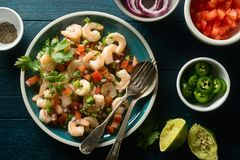 Shrimp Ceviche on a Blue Tabletop. Delicious shrimp ceviche with tomato, red onion, jalapeno pepper, cilantro and lime stock photo