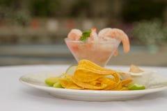 Shrimp Ceviche of Manabí stock photography