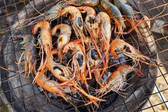 Shrimps on charcoal stove Royalty Free Stock Photography