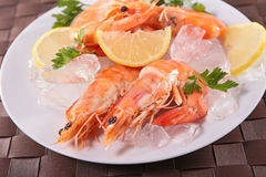 Shrimp. Close up on fresh shrimp Stock Photos