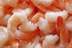 Shrimp. A close up on peeled jumbo shrimp Stock Photos
